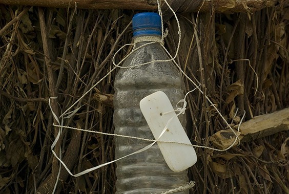 Ethiopia, 2009  Installed by the NGO WaterAid, makeshift wash stations like this one—a water bottle fastened to the exterior of a grass hut, with soap nearby—are appearing in Ethiopian villages, where lack of sanitation can be as dire a problem as water scarcity.