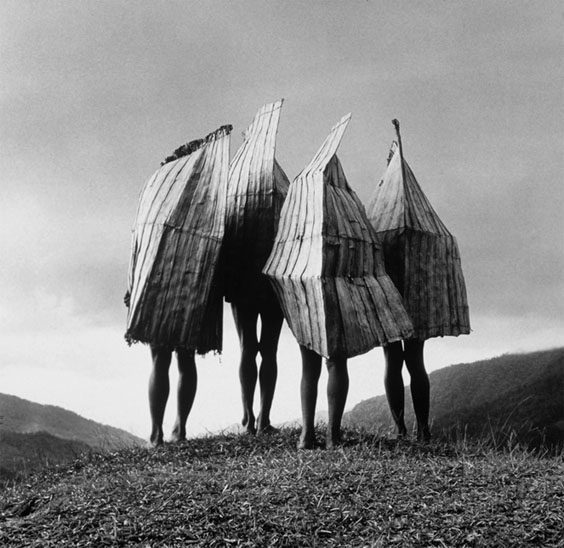 Highlands, NW Irian Jaya, New Guinea Four men wear pandanus-leaf rain capes, for protection in a rainstorm.