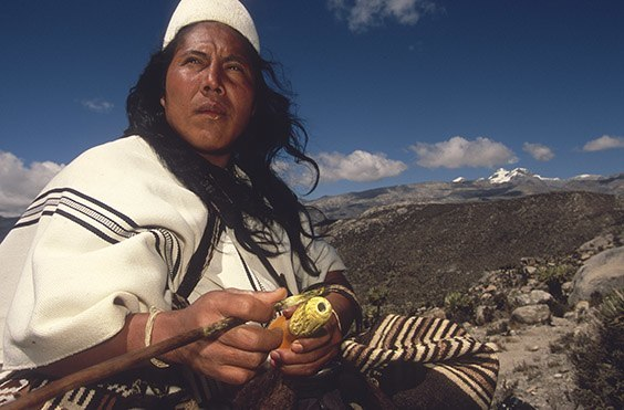 Sierra Nevada de Santa Marta, Colombia In the hands of Danilo Villafaña, a political leader of the Arhuacos, is a poporo, a gourd containing lime used to potentiate hayu, or coca, their most sacred plant. The conical hats worn by Arhuaco men represent the snowfields of the sacred peaks.