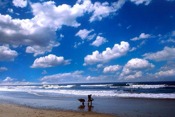 Aaron Huey: American Ocean