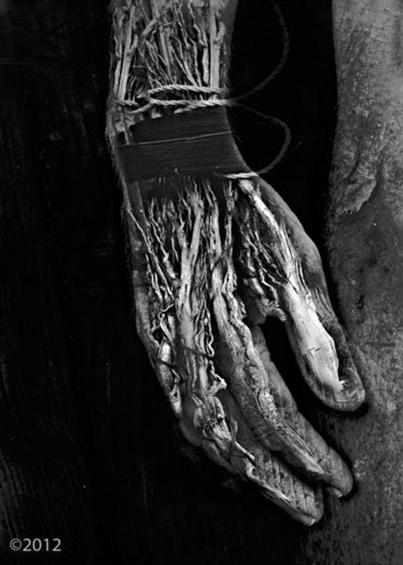 Photo by Barbara Parmet for Digital Darkroom exhibit
