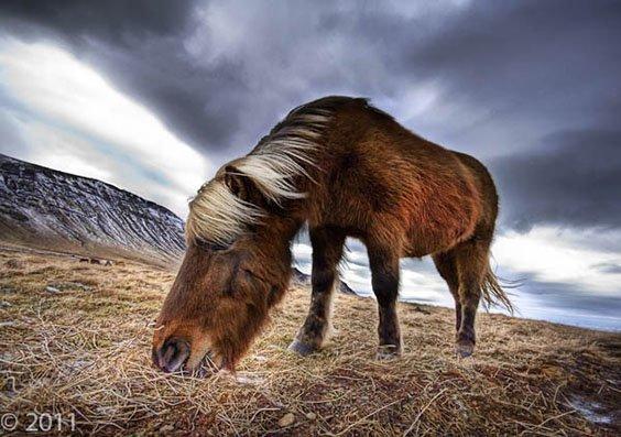 Photo by Trey Ratcliff for Digital Darkroom exhibit