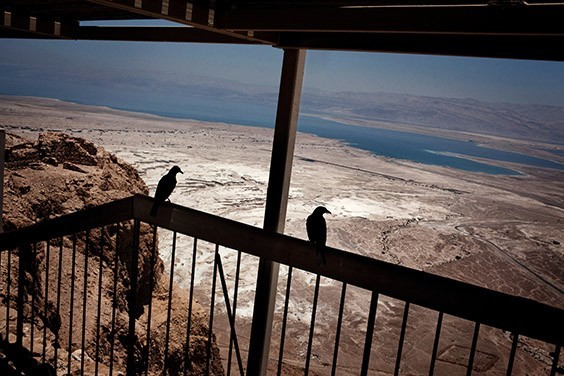 Israel, 2009  A bird's-eye view of the Dead Sea reveals a bleached expanse once covered by water. The level of the inland sea has dropped some 70 feet since 1978 due to evaporation and the greatly diminished flow of its main tributary, the Jordan River.