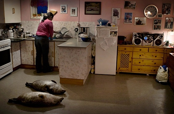 "From ""Disappearing Ice Age"": Schoolteacher and breadwinner Hansigne Thomassen of Aappilattoq, Greenland, cleans and prepares the seals her husband has brought back from hunting. The series captures rapidly changing life on the world's largest island. 2008."